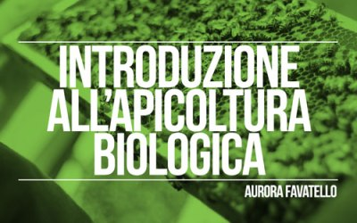 Introduzione all'apicoltura biologica