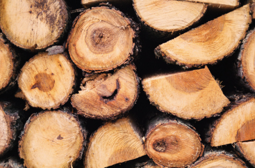 How To Dry Out Logs For Burning