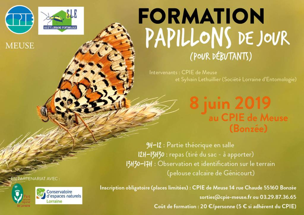 FORMATION PAPILLONS 2019