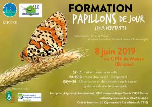 Formation papillons – 8 juin