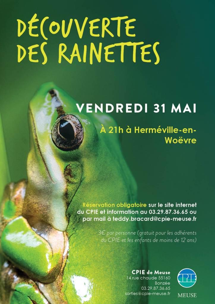 decouverte_rainettes