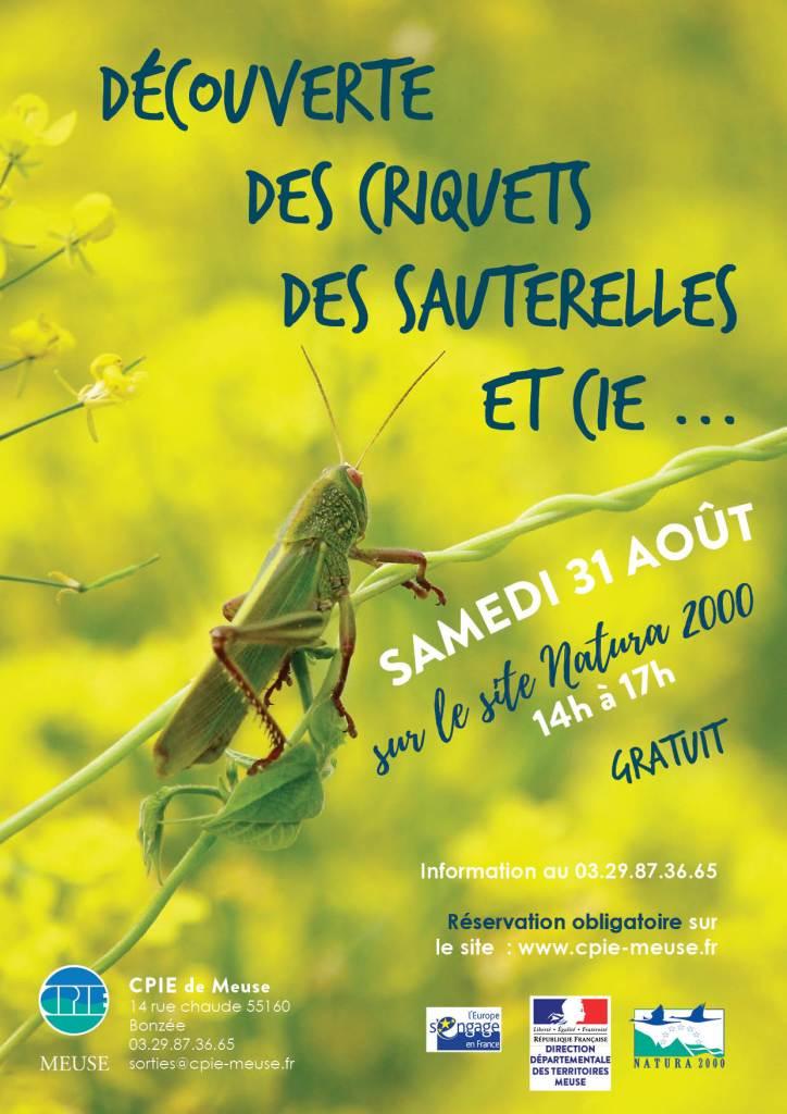 decouverte_insectes_N2000Argonne