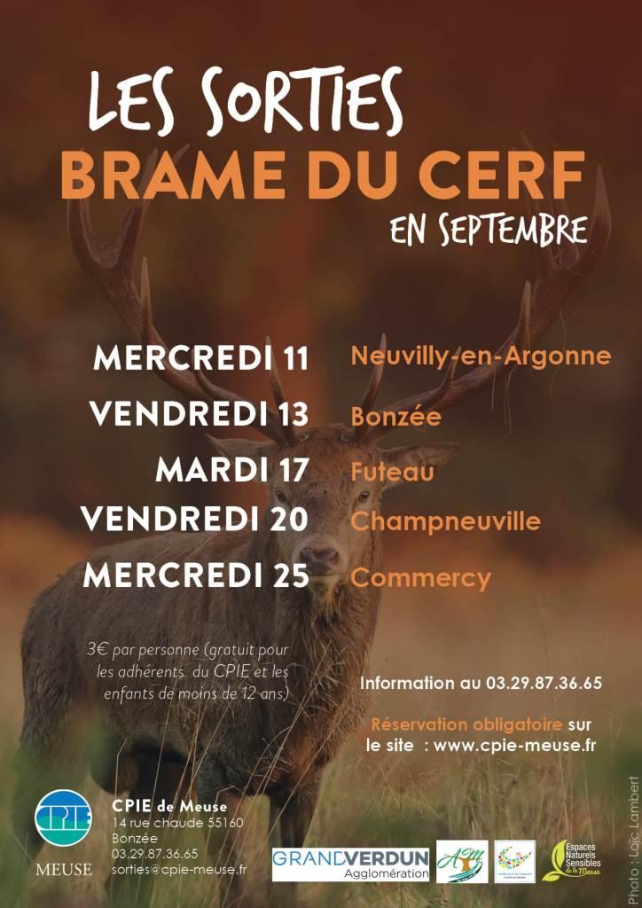 brame_cerf