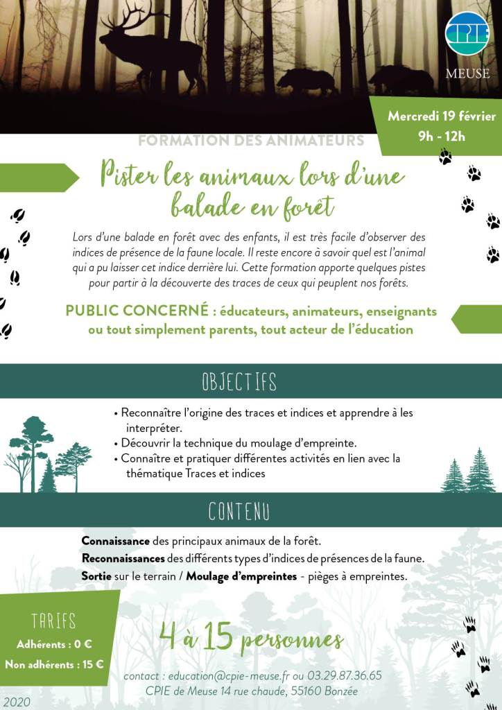 Pister les animaux foret