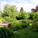 le jardin vu depuis la maison