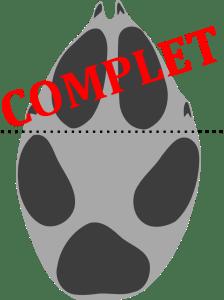 20181128-Reconnaître les traces et indices d'animaux en forêt @ Médiathèque de Royère de Vassivière | Royère-de-Vassivière | Nouvelle-Aquitaine | France