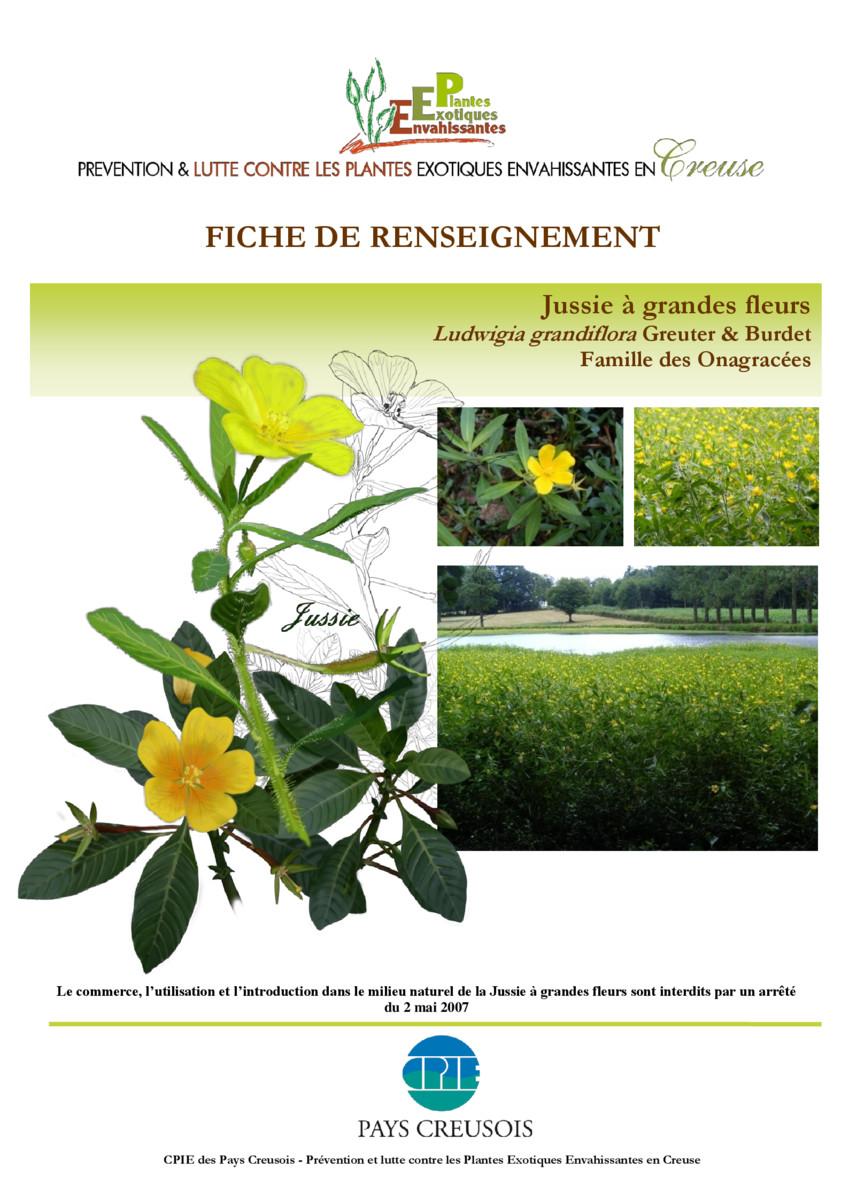 thumbnail of CR_Fiche_conseil_JUSSIE