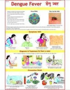 Dengue fever causes chart also common diseases prevention charts exporter manufacturer rh vcpmaps