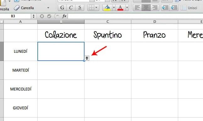 screenshot_planner_pasti_excel
