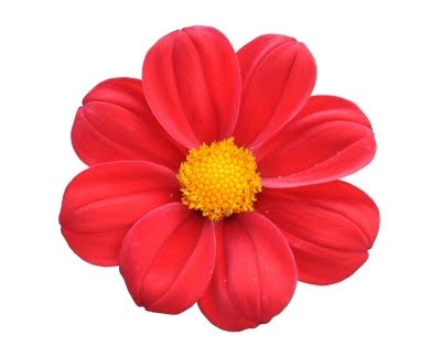 La Fleurcup.