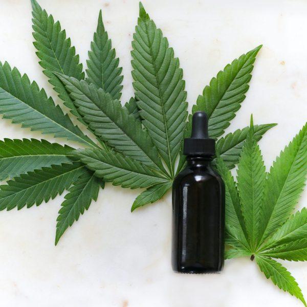chelsea cannabis clinic - cpmc