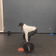 Nicole at CPM performs a deadlift