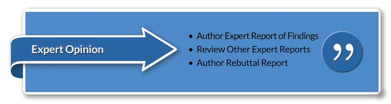 Expert Opinion • Author Expert Report of Findings • Review Other Expert Reports • Author Rebuttal Report