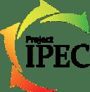 IPEC Training