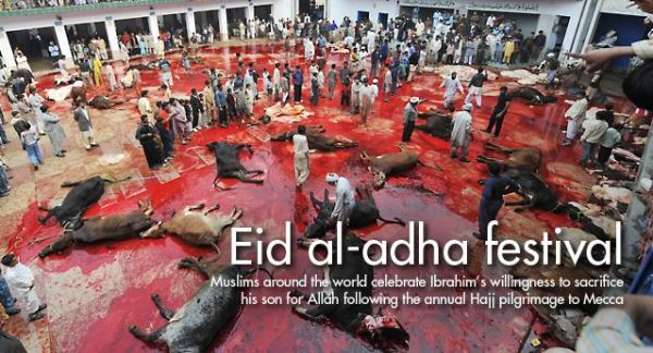 Muslim holiday of Eid alAdha and the slaughter of animals
