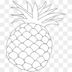 Free Pineapple Outline Png Transparent Images PikPng