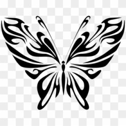 Butterfly 19 Black White Line Art Flower 999px 144 Simple Drawing Of Butterfly Clipart #360885 PikPng