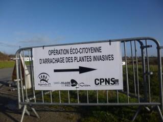 CPNS-anti-baccharis-panneau