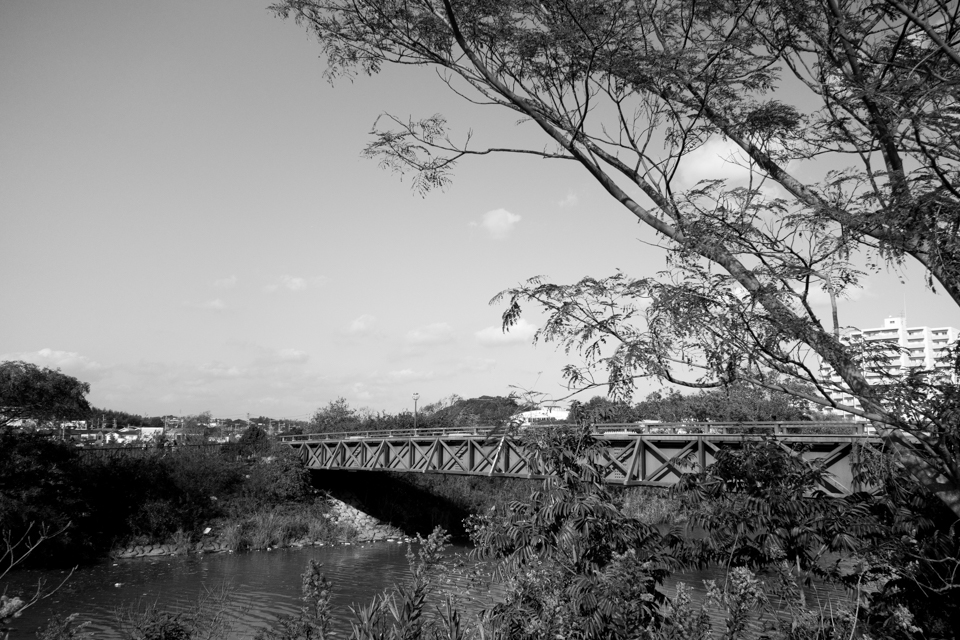 佐鳴湖のふれあい橋