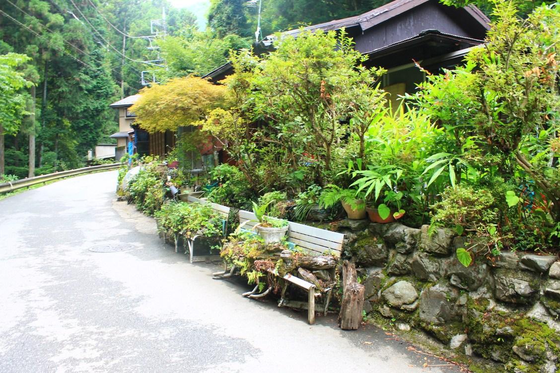 hiking mt Takao