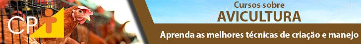 Área Avicultura 01