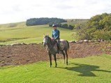 Marie Smith and Clouded Moon - beginning work for the 2013-14 endurance season.