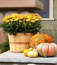 Fall Front Door Decorating Ideas | Crabby Housewife