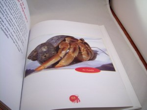 World Book Animals - Photo featured by Vanessa Pike-Russell