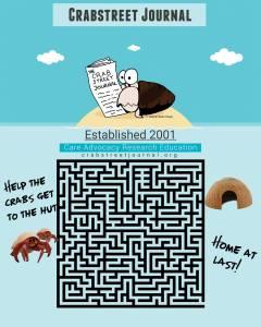 Hermit crab maze 1