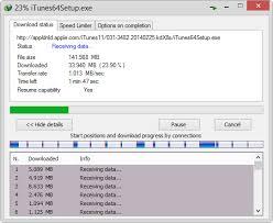Internet Download Manager 6.31 Crack
