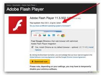 Adobe Flash Player 31.0.0.153 Crack