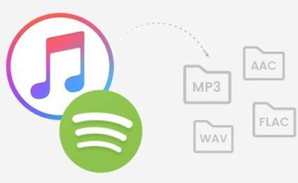 Sidify Music Converter 2.0.6 Crack Free Download