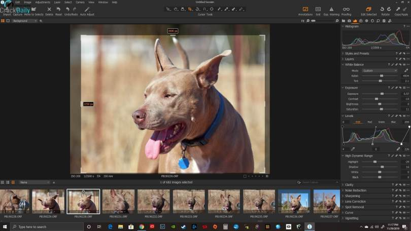 Capture One 20 Pro Screenshot