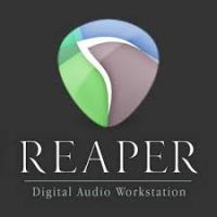Cockos REAPER 6.38 Crack +Patch & Serial Key Free 2021 Download