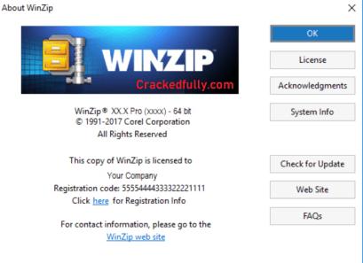 WinZip Crack Free