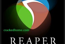 REAPER Crack free