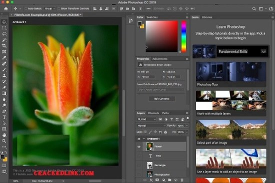 Adobe Photoshop CC 2021 Crack With Serial Number [Latest] Free