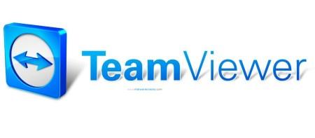 TeamViewer 13 Crack