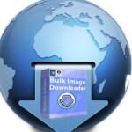 Bulk Image Downloader Crack