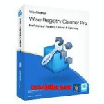 Wise Registry Cleaner 10.4.1 Crack with Full Key 2021 Free Download