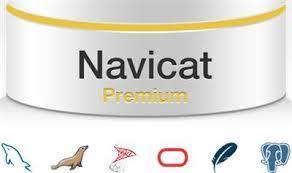 Navicat Premium 12 Crack With Activation Number Free Download 2019