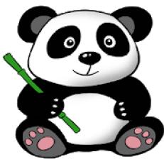 Panda VPN 15.14.4.0 Crack