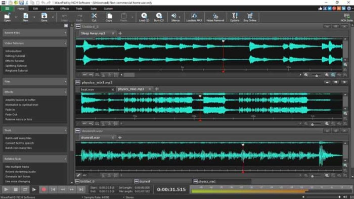 WavePad Sound Editor Key