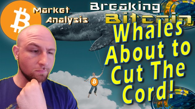 text whales about to cut the cord! next to justin's unsure face with hand on chin with giant flying whale carry a person from strings with bitcoin logo on his shirt graphic background