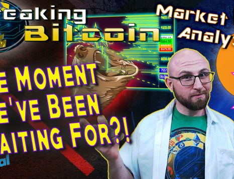 text the moment we've been waiting for?! next to justin with arms up shrugging not sure smiling happy with bear eating the dropping bitcoin chart candles with graphic background and bitcoin logo and xrp logo and paypal logo