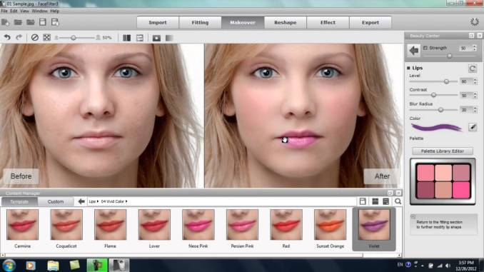 Reallusion FaceFilter 3 incl Serial Key Full Version [Latest]