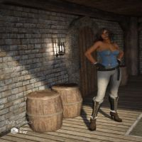 DAZ3D - Fantasy Wine Cellar
