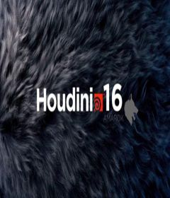 SideFX Houdini incl Keygen