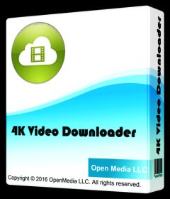 4K Video Downloader 4.4.8.2317 + Portable + patch