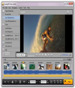 SolveigMM Video Splitter Business Edition 6.1.1808.03 + Portable + Serial